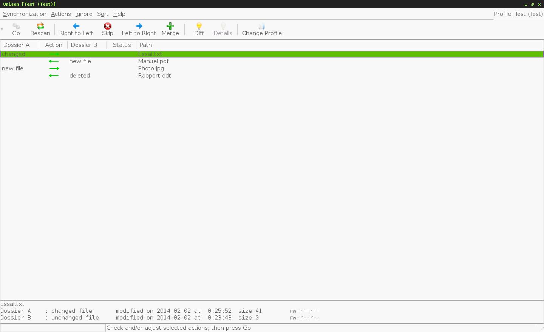Prise d'écran du logiciel de synchronisation de fichiers Unison